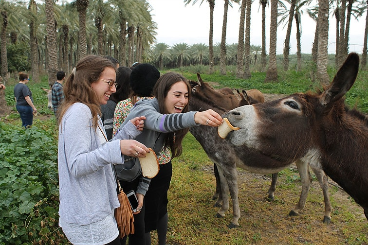 הבשורה החדשה של עולם התיירות-   CULTURAL TOURISM או אם תרצו- תיירות חברתית